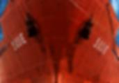 ship-598471_1920.png