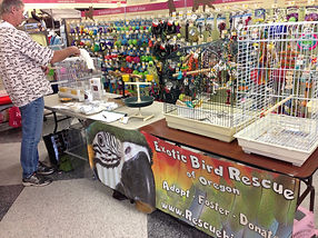 Attend an Adoption event in Beaverton, Hilsboro or Gresham with the Exotic Bird Rescue of Oregon EBR