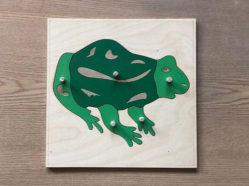 Puzzle Montessori - Żabka