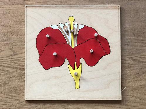 Puzzle Montessori - Kwiatuszek