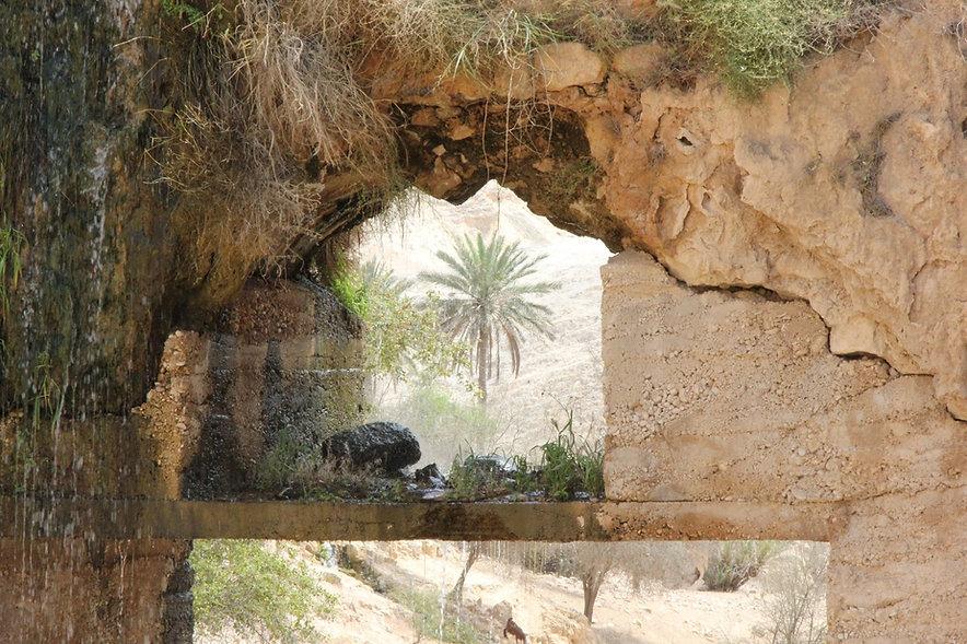 wadi qelt 2 066.JPG