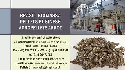 2021 Brasil Biomassa AgroPellets Arroz.jpg