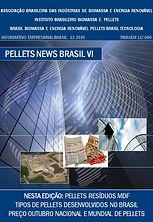 Pellets News Brasil VI.jpg