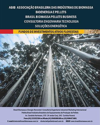 Soluções Energética Fundos dee Investime