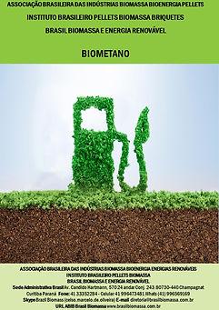 01 Biometano.jpg