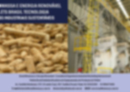 2019 Brasil Biomassa Pellets Brasil.jpg