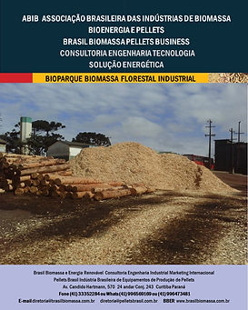 Soluções Energética Bioparque Biomassa F