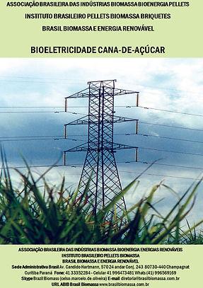 03 Bioeletricidade  Cana de açúcar.jpg