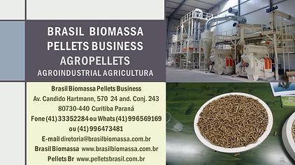 2021 Brasil Biomassa AgroPellets.jpg