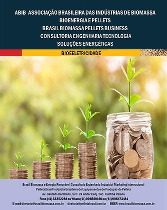 Soluções Energética Bioeletricidade.jpg