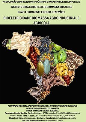 05 Bioeletricidade Agroindustrial.jpg