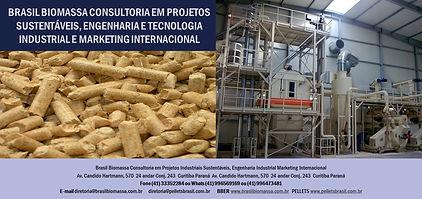 2021 Brasil Biomassa Consultoria Engenharia Tecnologia.jpg