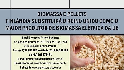 News Biomassa e Pellets. A Finlândia sub