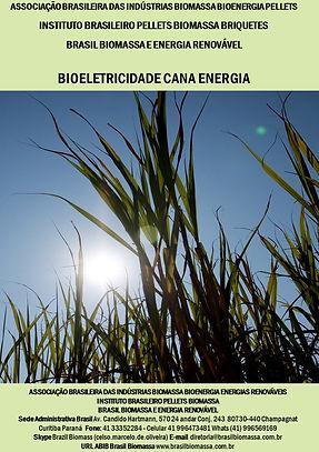 01 Bioeletricidade Cana Energia.jpg