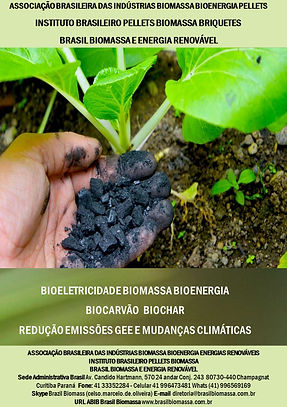 Bioeletricidade Biomassa Biocarvão.jpg
