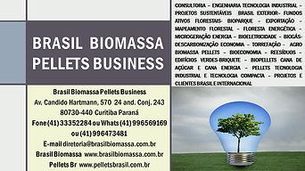Brasil Biomassa Pellets Business News.jp