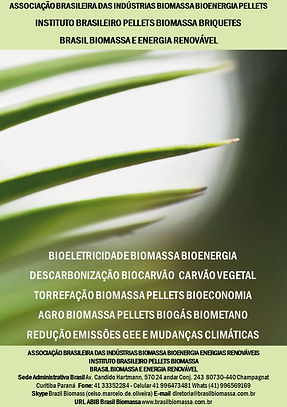 Bioeletricidade Biomassa Bioenergia Bioc