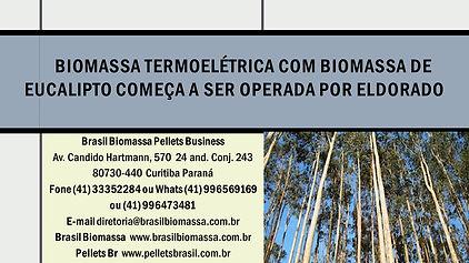 Biomassa Termoelétrica com biomassa de e