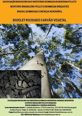 01 Bioeletricidade Carvão Vegetal.jpg