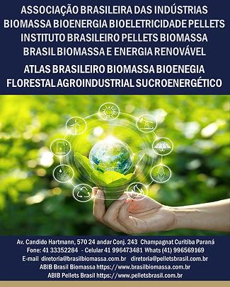2021 Atlas Brasileiro Biomassa Bioenergia.jpg