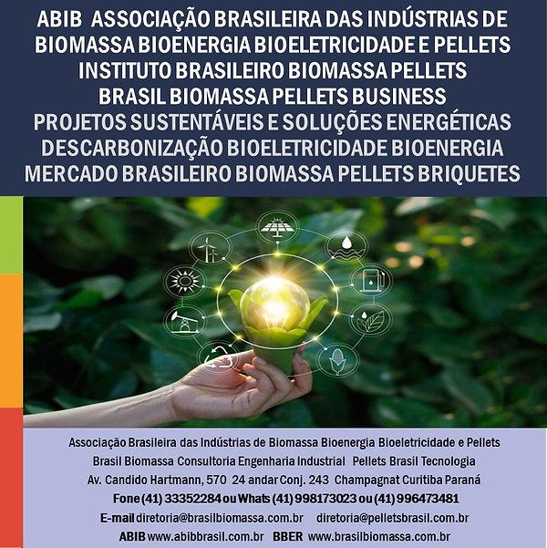 2021 ABIB Brasil Biomassa Projetos Sustentáveis e Soluções Energéticas.jpg
