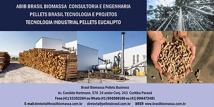 2021 Brasil Biomassa Industrial Peellets Eucalipto.jpg