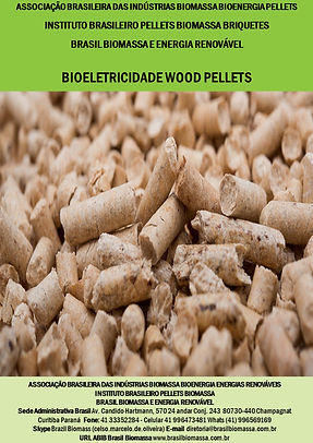 Bioeletricidade Wood Pellets.jpg