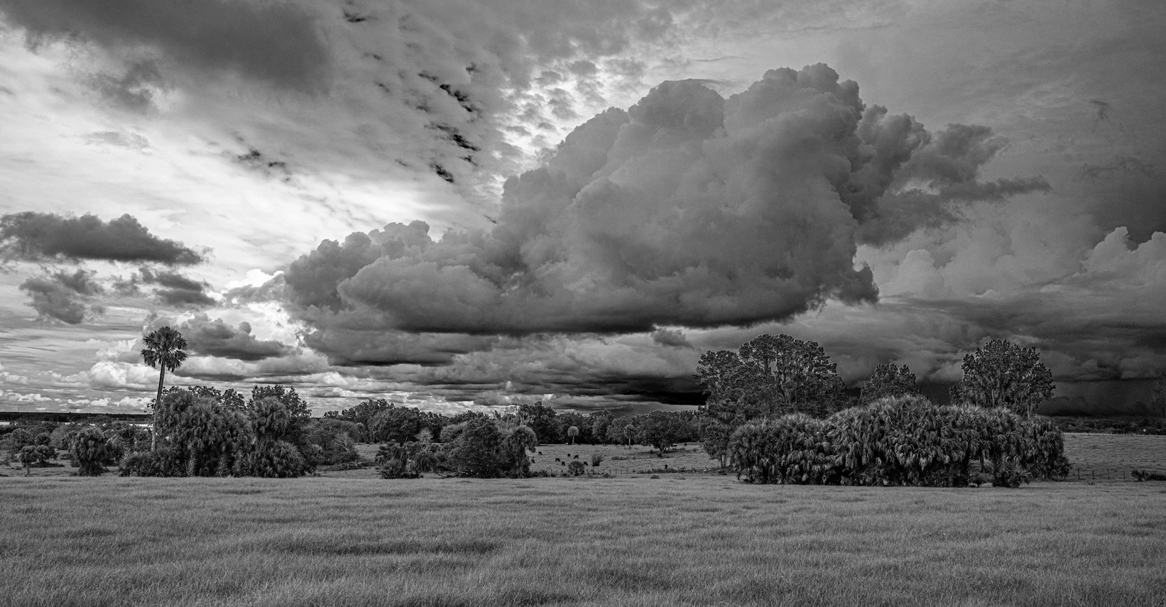 """Storm Brewing Over The Hill"" ©SMD"