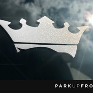 white crown.jpg