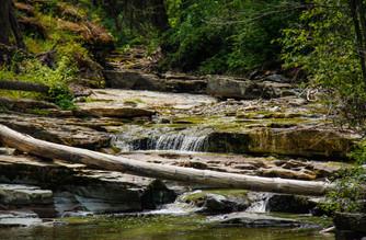 Pinkham Creek
