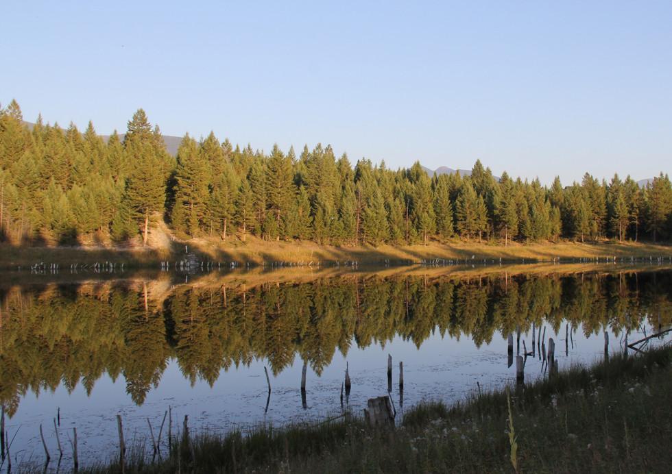 Big Moose Pond