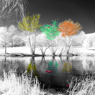 I R frozen pond
