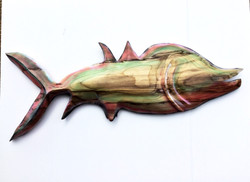 dolphin ( Hackberry ) 20'' tall 48''
