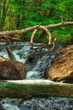 Dicks Creek WM N. Ga.