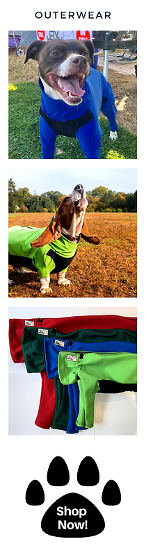 Custom made coat and jackets for dogs of all sizes. small breed to large breed. Handmade locally to fit your dog perfectly. Full-body coverage and water-resistant and wind-resistant