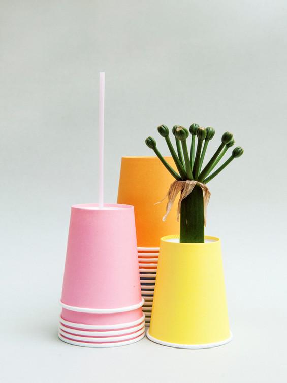 Paper Cup Mews.jpg