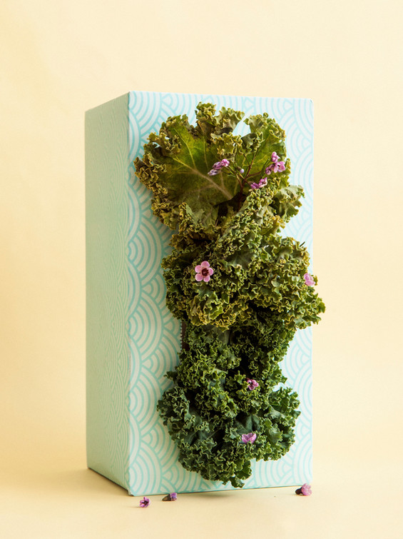 Tissue Box Studios complete with Green W