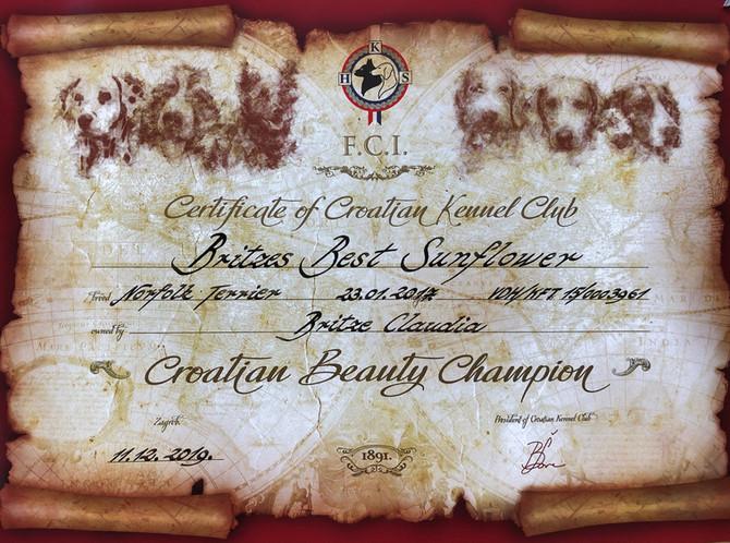 Championurkunde Kroatien