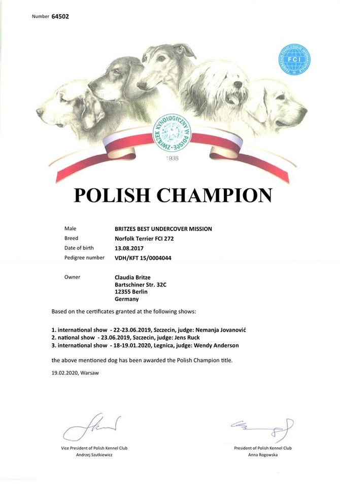 Urkunde aus Polen