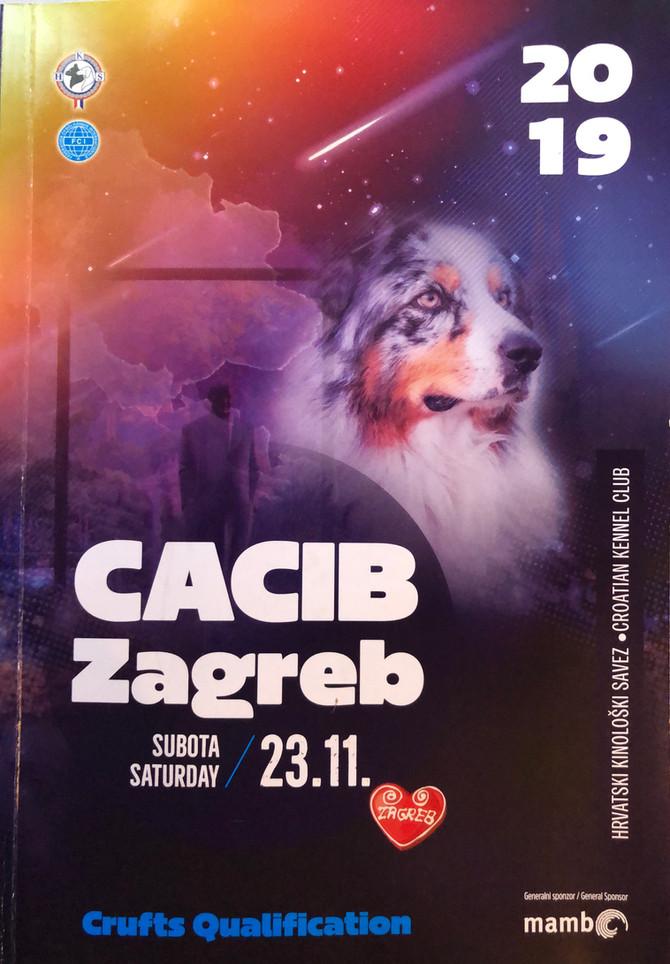 Zagreb Winter Classics/CACIB Zagreb