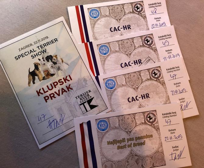 Kroatien/Zagreb Clubchampionchip for Terriers