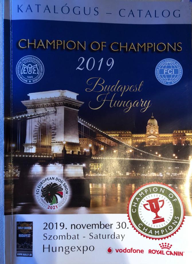 Champion of Champions Show Budapest