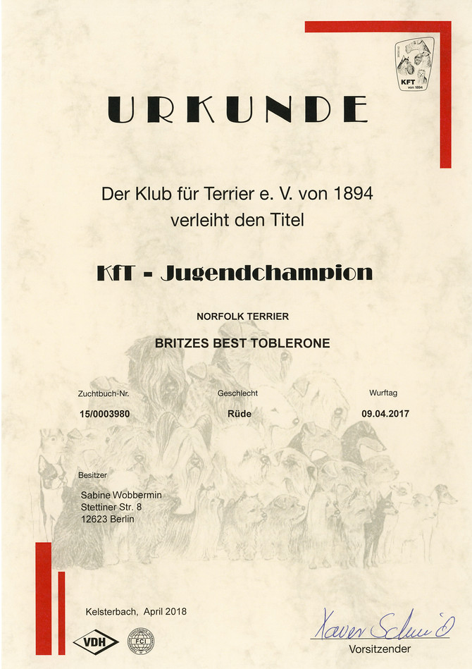Deutscher Jugendchampion KfT...