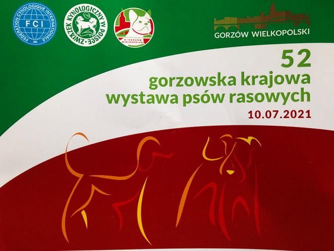 Nat. Doppelausstellung in Gorzow Wlkp., Polen