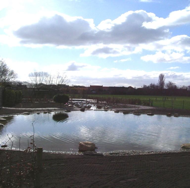 tuin met vijver en zwemvijver