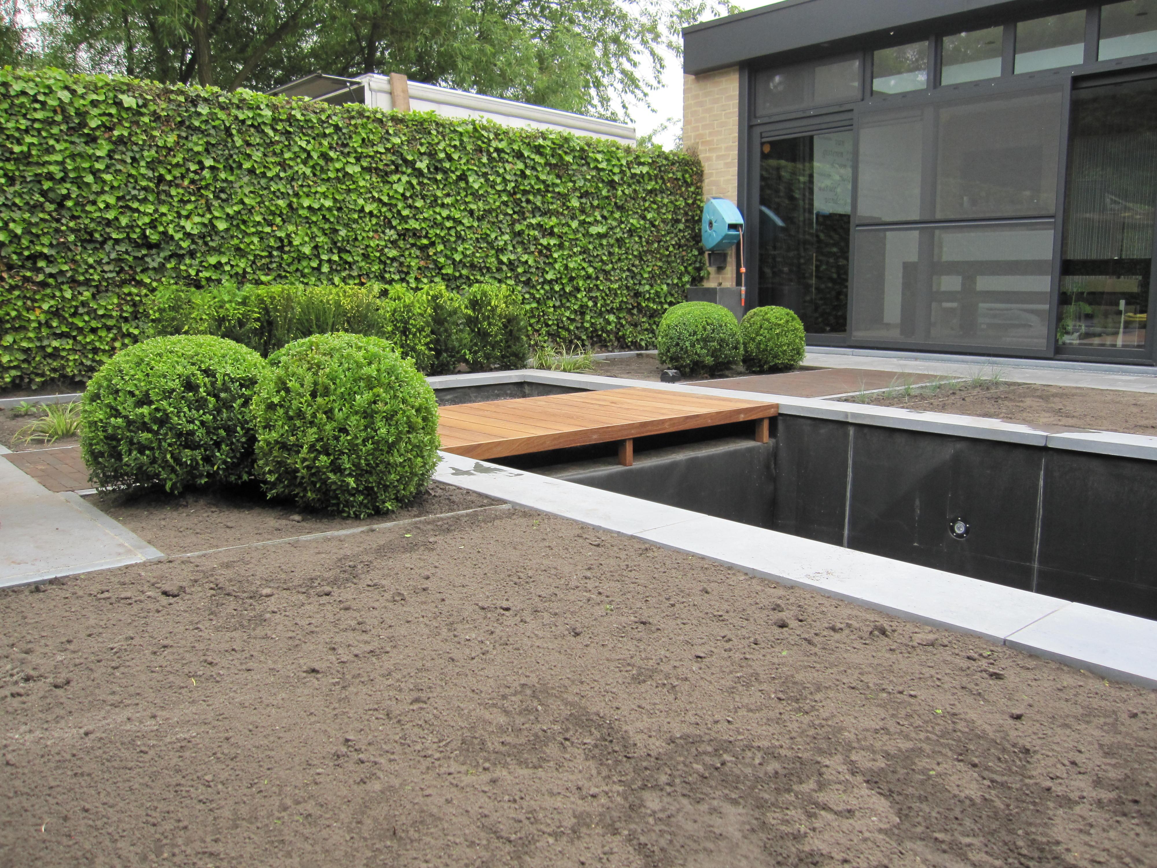 strakke achtertuin met vijver