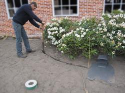 voorbereiding aanleg gazon