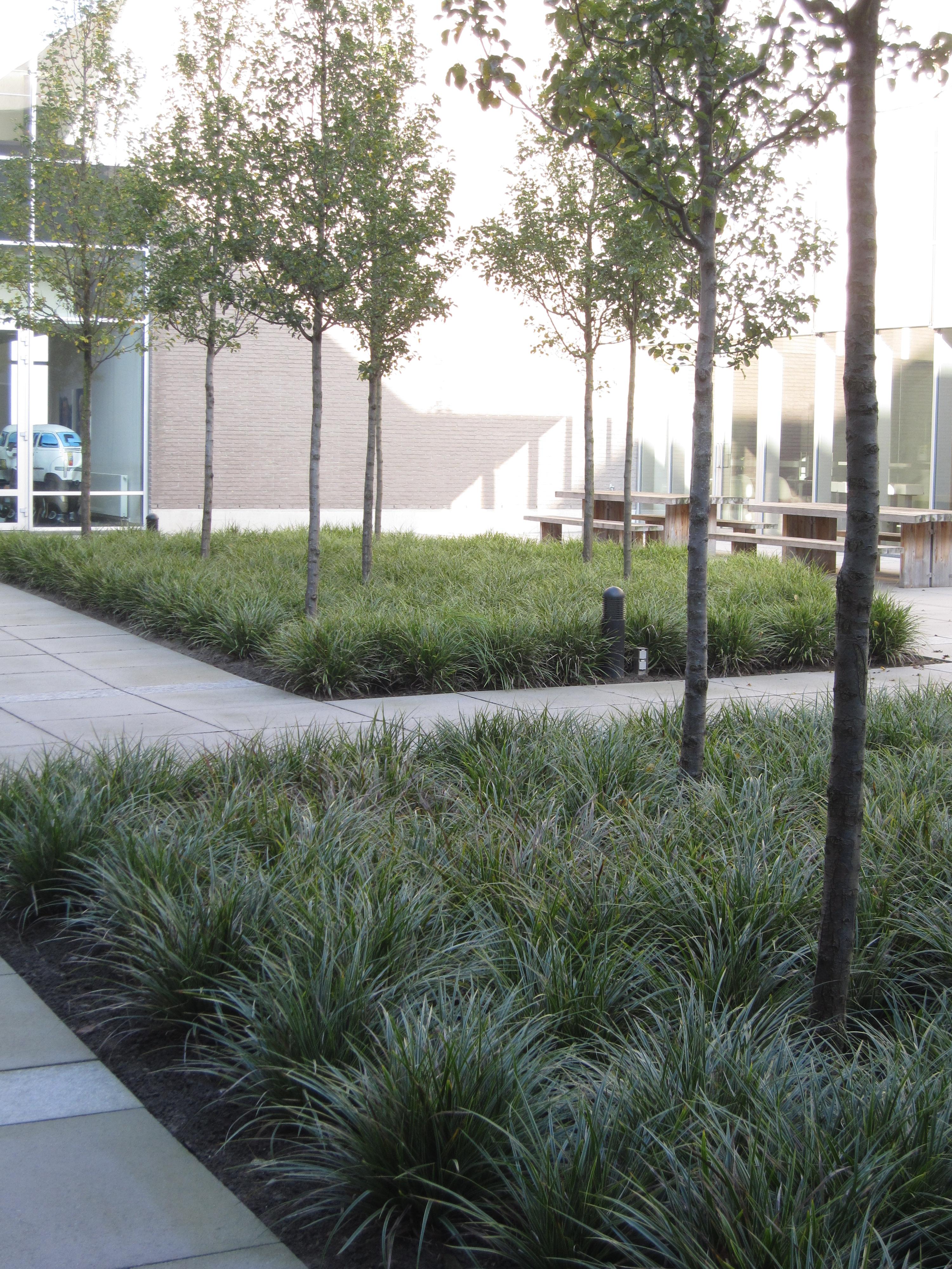 bedrijfstuin met patio