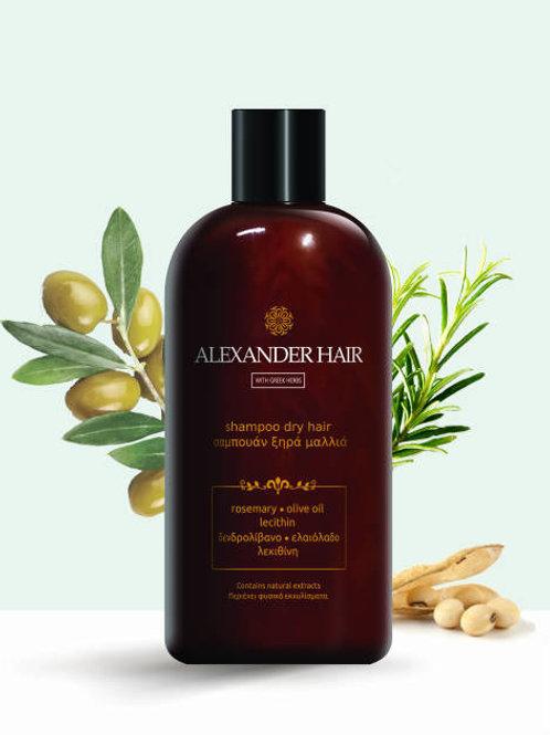 Σαμπουάν για Ξηρά Μαλλιά