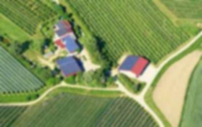ecommerce rural.jpg